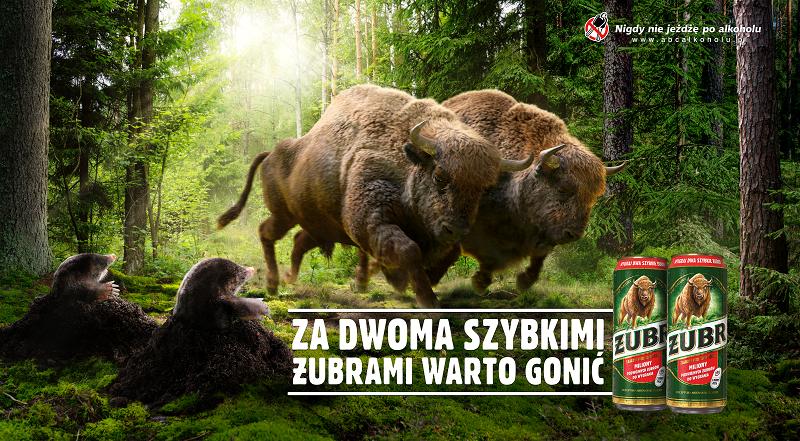 """Za Dwoma Szybkimi Żubrami warto gonić. Żubr wystartował z 6. edycją promocji """"Dwa Szybkie Żubry"""""""